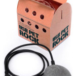 El curioso producto de la piedra USB de mascota